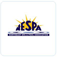 logo-NESPA